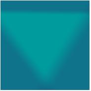 turtle-logo-icon